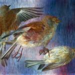 Dead Sparrows (1951)
