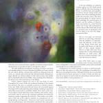 Fine Art Connoisseur Page 7